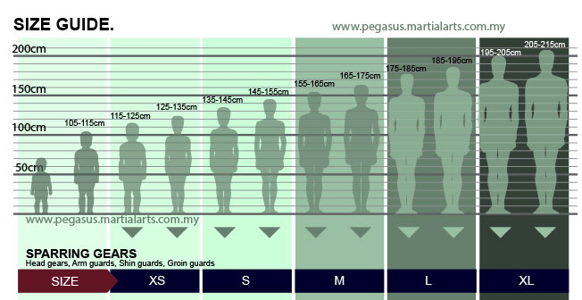 size chart for sparring gears