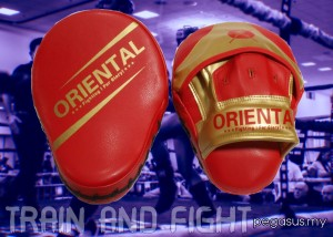ORIENTAL Focus Mitt (PU Leather)