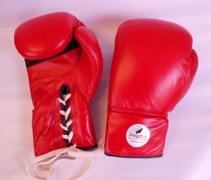 PEGASUS LEATHER BOXING GLOVE-12OZ-PBG3
